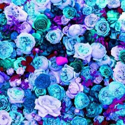 Floblue discovered by @liiz_ruiz_ on We Heart It +100 Iphone