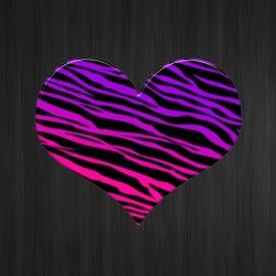 Hot Zebra Wallpapers +100 Iphone