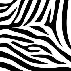 Zebra print +100 Iphone