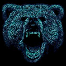 Angry Bear Art iPhone Wallpaper   +100 Iphone