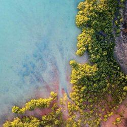 Island Beach Drone View iPhone Wallpaper | +100 Iphone