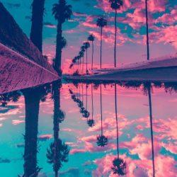 Miami Sunset iPhone Wallpaper | +100 Iphone